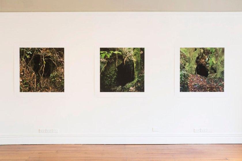 Homewardbounder at Enjoy Public Art Gallery, photo courtesy of Enjoy photo credit Shaun Mathews