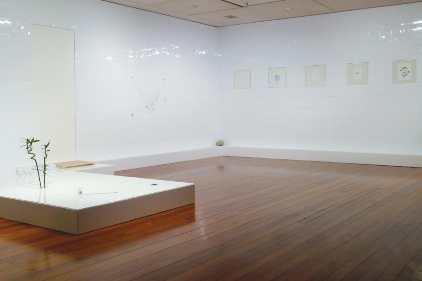 Zina Swanson, For Luck 2015, multi media installation, Dunedin Public Art Gallery, Courtesy of the artist.