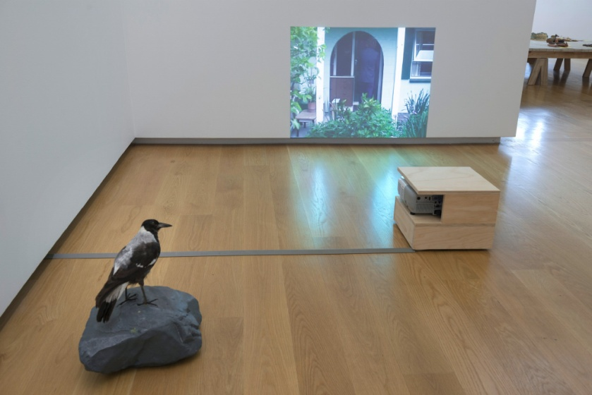 RONNIE VAN HOUT - Inside Outside Upside Down installation view 2015-07-20-11